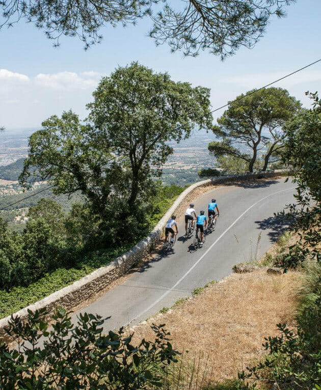 Guided Bike Tours in Mallorca